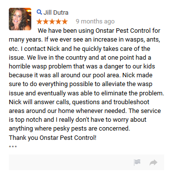 Onstar_review_4