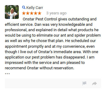 onstar_review_9 - Copy